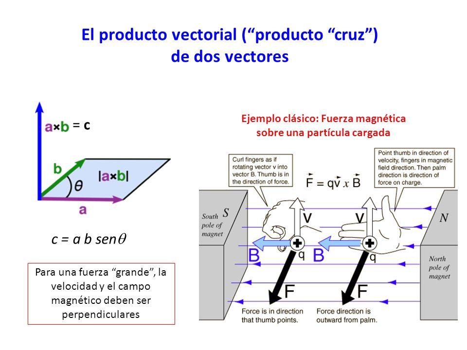 El producto vectorial (producto cruz) de dos vectores = c c = a b sen Ejemplo clásico: Fuerza magnética sobre una partícula cargada Para una fuerza grande, la velocidad y el campo magnético deben ser perpendiculares