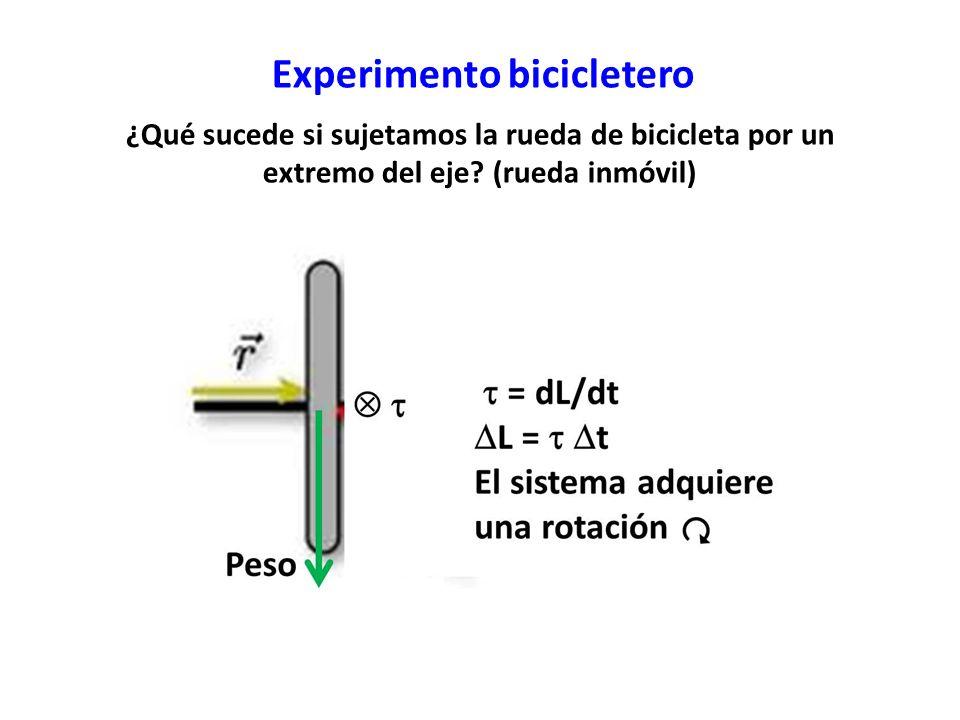 ¿Qué sucede si sujetamos la rueda de bicicleta por un extremo del eje? (rueda inmóvil) Experimento bicicletero