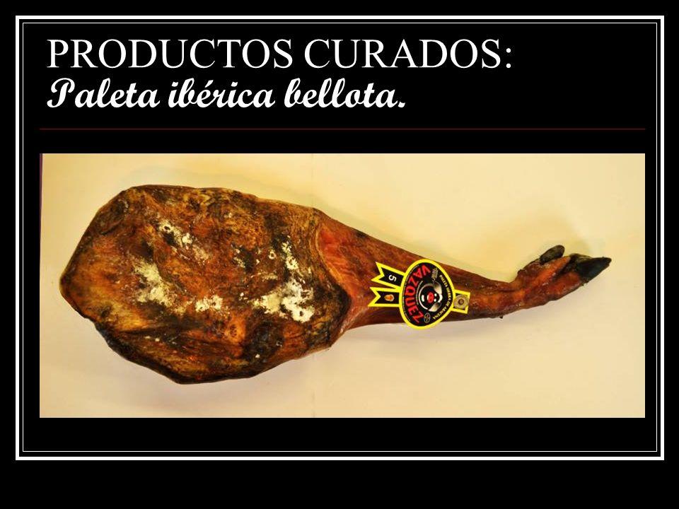 PRODUCTOS CURADOS: Jamón ibérico cebo.