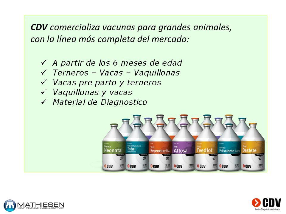 CDV comercializa vacunas para grandes animales, con la línea más completa del mercado: