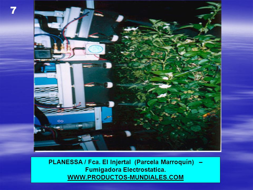 PLANESSA / Fca.El Injertal (Parcela Marroquín) – Fumigadora Electrostatica.