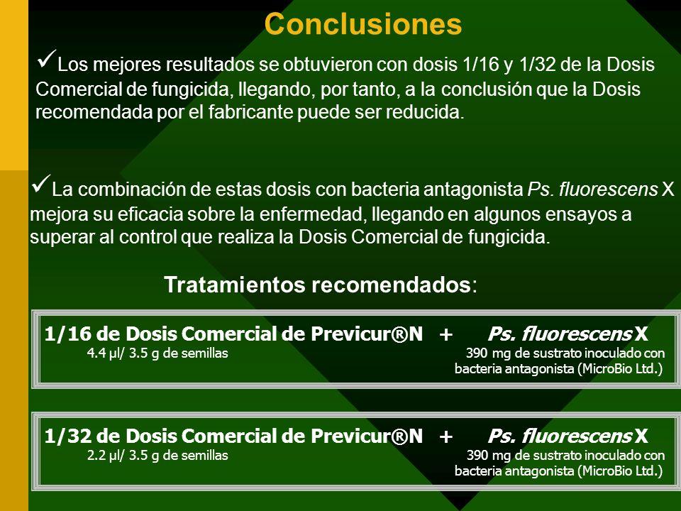 Conclusiones Los mejores resultados se obtuvieron con dosis 1/16 y 1/32 de la Dosis Comercial de fungicida, llegando, por tanto, a la conclusión que l