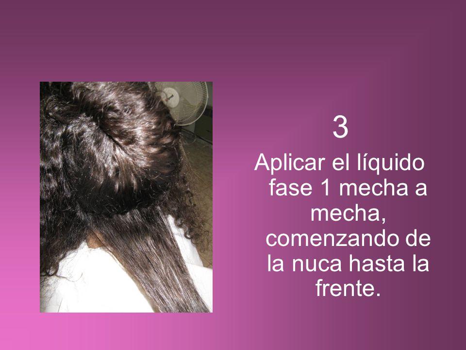 3 Aplicar el líquido fase 1 mecha a mecha, comenzando de la nuca hasta la frente.
