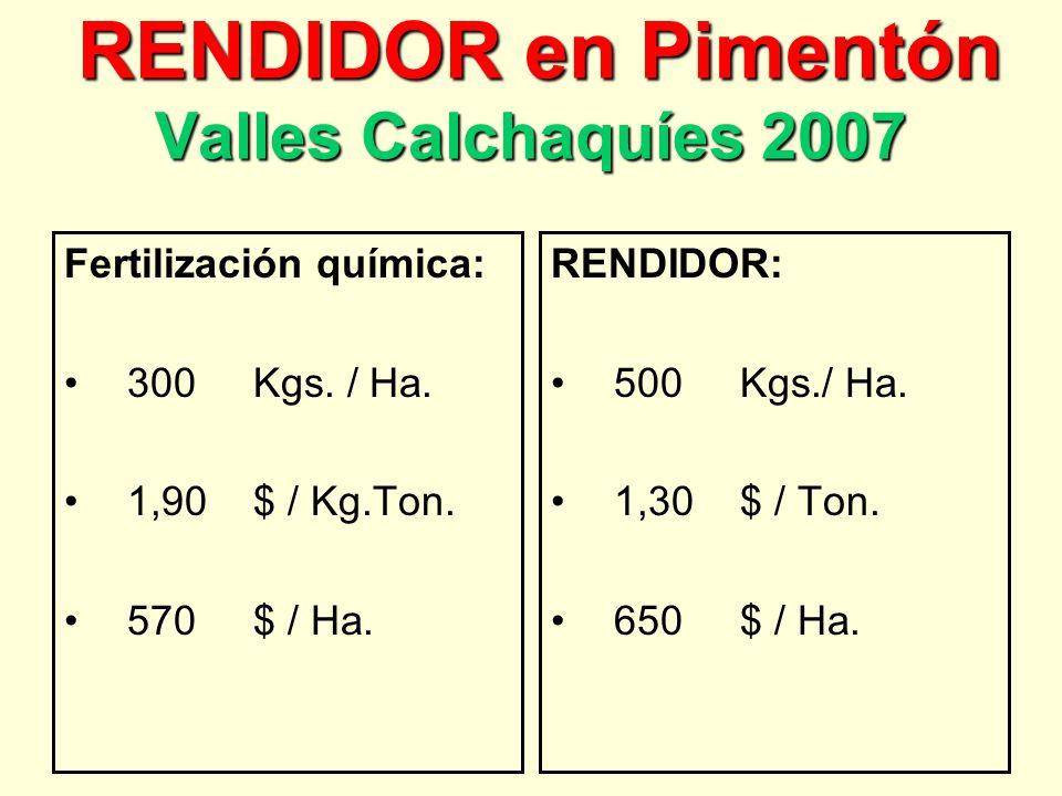 RENDIDOR en Pimentón Valles Calchaquíes 2007 RENDIDOR en Pimentón Valles Calchaquíes 2007 Fertilización química: 300 Kgs.