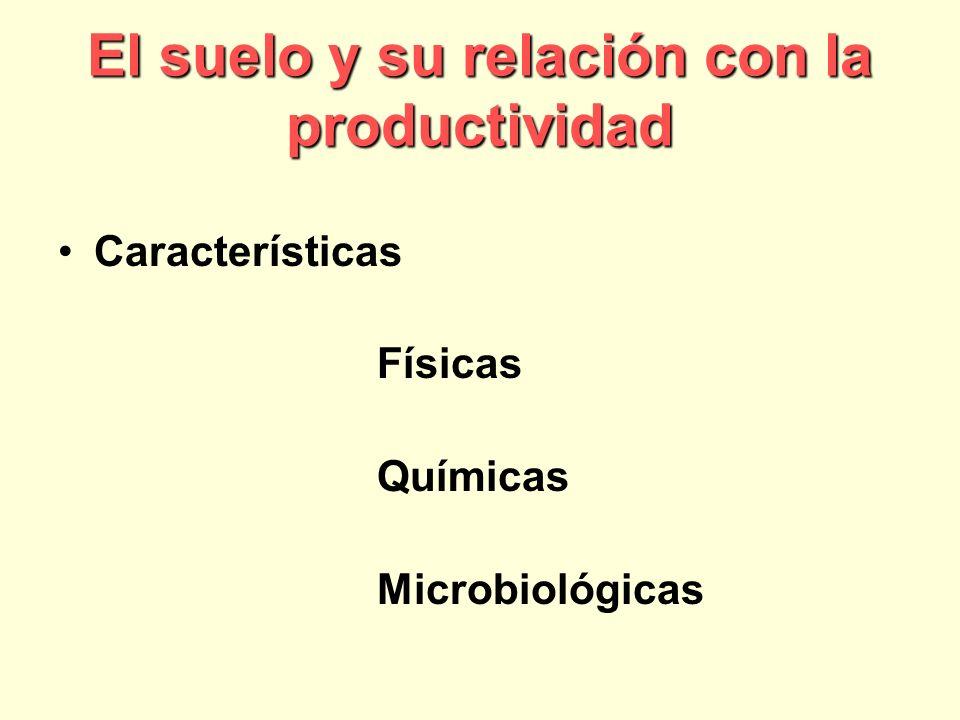 El suelo y su relación con la productividad Características Físicas Químicas Microbiológicas