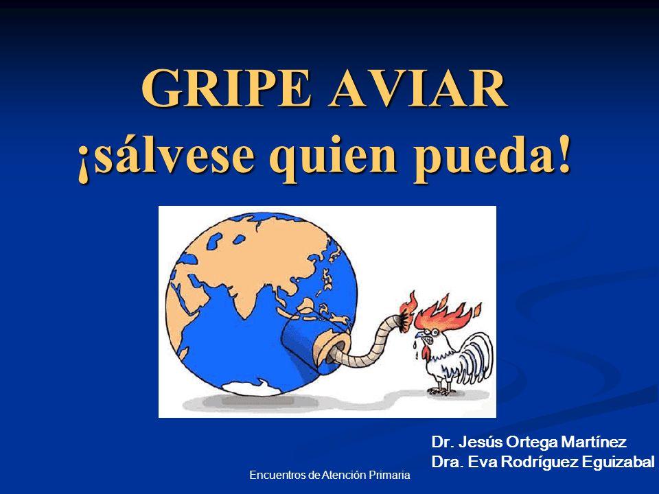 Encuentros de Atención Primaria GRIPE AVIAR ¡sálvese quien pueda! Dr. Jesús Ortega Martínez Dra. Eva Rodríguez Eguizabal