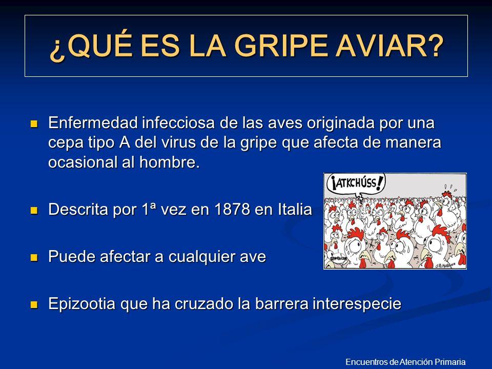 Encuentros de Atención Primaria PANDEMIAS GRIPALES EN HUMANOS EN EL SIGLO XX 1918 Gripe Española H1N1 40 Millones de muertos 40 Millones de muertos 20-30% de la población enferma 20-30% de la población enferma 1957 Gripe Asiática H2N2 2 Millones de muertos 2 Millones de muertos 1968 Gripe de Hong Kong H3 N2 1 Millón de muertos 1 Millón de muertos