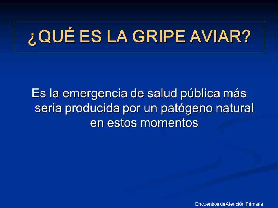 Encuentros de Atención Primaria 30- MARZO 2006 PRIMER ENSAYO CLÍNICO DE 1ª VACUNA VACUNAS