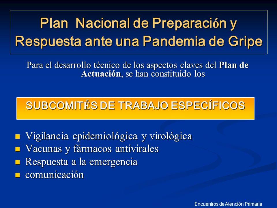 Encuentros de Atención Primaria Para el desarrollo técnico de los aspectos claves del Plan de Actuación, se han constituído los Vigilancia epidemiológ