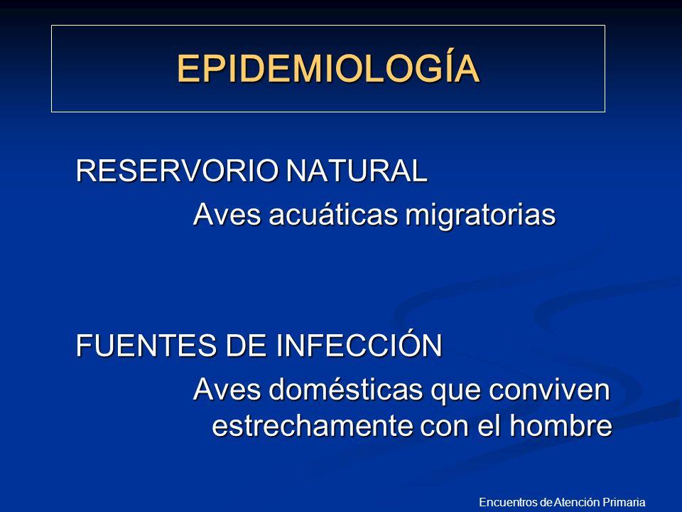 Encuentros de Atención Primaria PROCEDIMIENTO A SEGUIR ANTE LA DETECCIÓN DE INFECCIÓN HUMANA POR EL VIRUS DE LA GRIPE A/H5 EN LA FASE 3 DE ALERTA PANDÉMICA PROCEDIMIENTO A SEGUIR ANTE LA DETECCIÓN DE INFECCIÓN HUMANA POR EL VIRUS DE LA GRIPE A/H5 EN LA FASE 3 DE ALERTA PANDÉMICA Plan Nacional de Preparaci ó n y Respuesta ante una Pandemia de Gripe