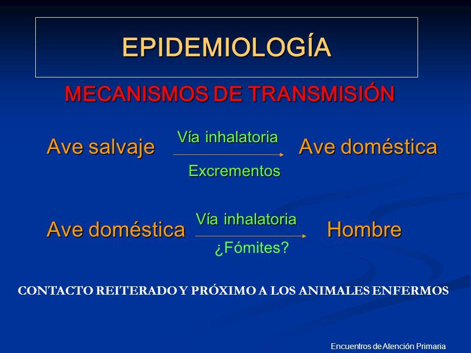 Encuentros de Atención Primaria MEDIDAS ADOPTADAS POR EL MINISTERIO DE S Y C Plan Nacional de Preparaci ó n y Respuesta ante una Pandemia de Gripe (MAYO 2005)