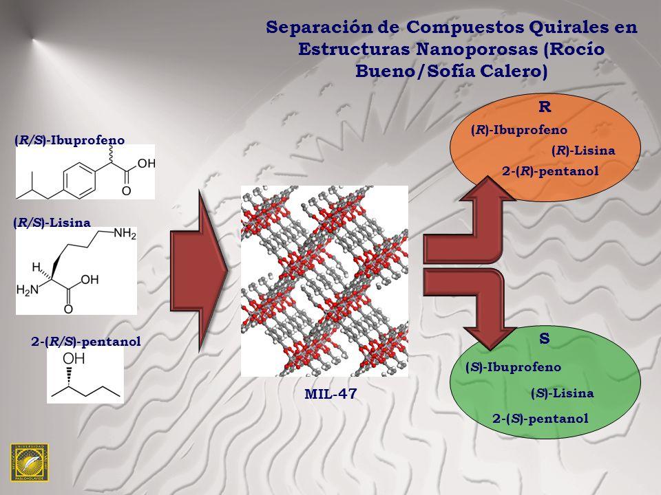 Separación de Compuestos Quirales en Estructuras Nanoporosas (Rocío Bueno/Sofía Calero) ( R/S )-Ibuprofeno MIL-47 ( R/S )-Lisina 2-( R/S )-pentanol R