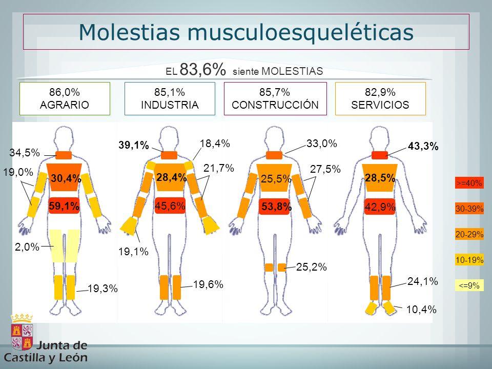 30-39% 20-29% 10-19% <=9% >=40% 59,1% 34,5% Molestias musculoesqueléticas 86,0% AGRARIO 86,0% AGRARIO 85,1% INDUSTRIA 85,1% INDUSTRIA 82,9% SERVICIOS