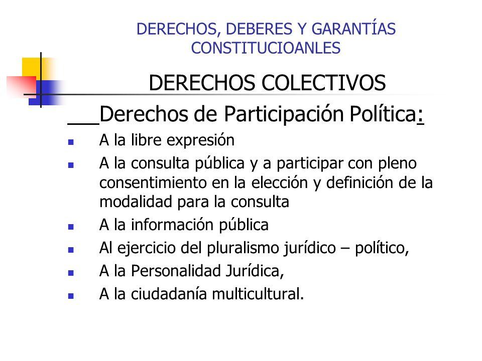 DERECHOS COLECTIVOS Derechos de Participación Política: A la libre expresión A la consulta pública y a participar con pleno consentimiento en la elecc