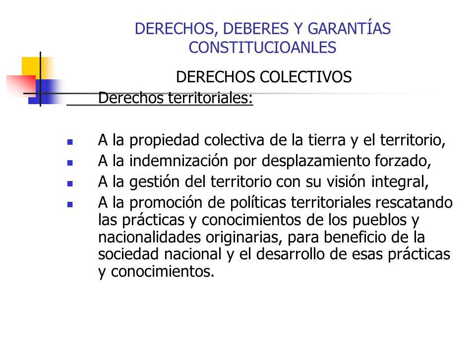 DERECHOS COLECTIVOS Derechos territoriales: A la propiedad colectiva de la tierra y el territorio, A la indemnización por desplazamiento forzado, A la