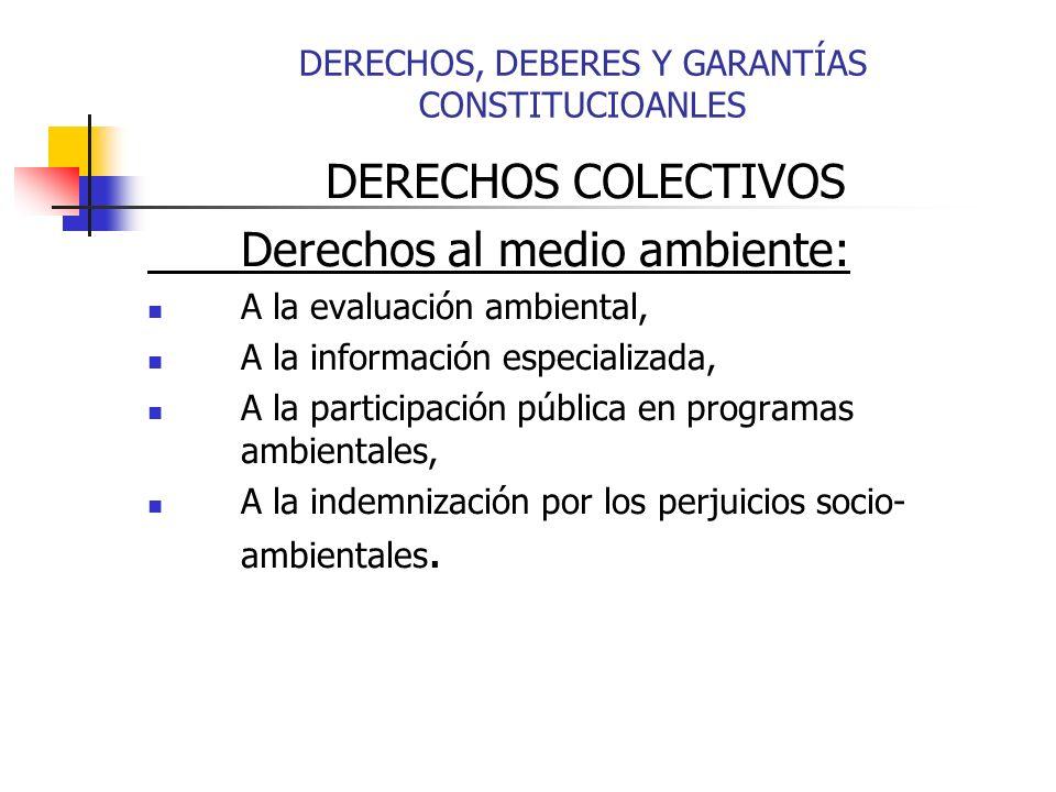 DERECHOS COLECTIVOS Derechos al medio ambiente: A la evaluación ambiental, A la información especializada, A la participación pública en programas ambientales, A la indemnización por los perjuicios socio- ambientales.