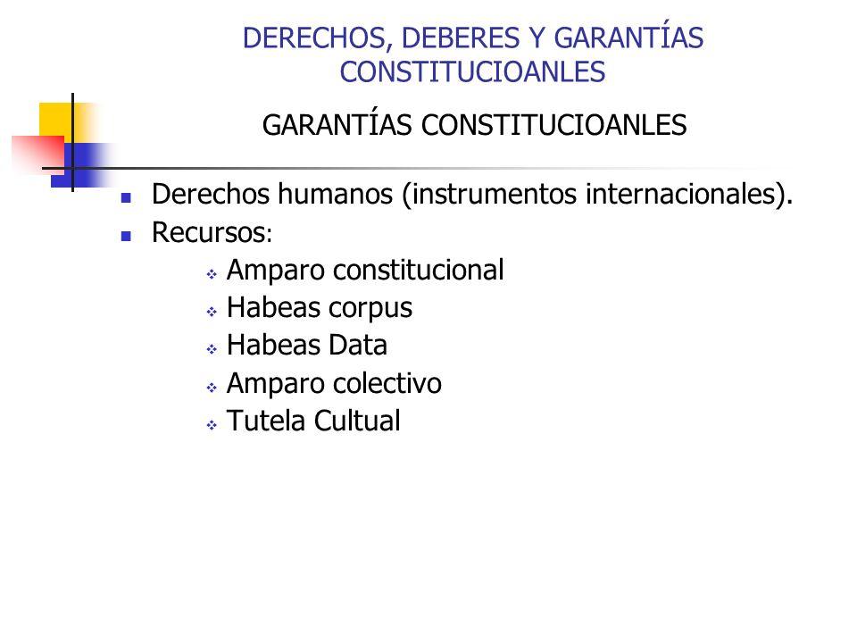 GARANTÍAS CONSTITUCIOANLES Derechos humanos (instrumentos internacionales). Recursos : Amparo constitucional Habeas corpus Habeas Data Amparo colectiv