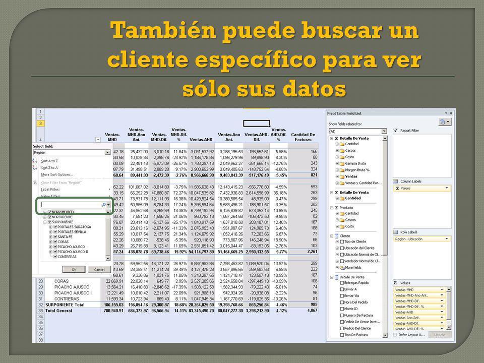 También puede buscar un cliente específico para ver sólo sus datos
