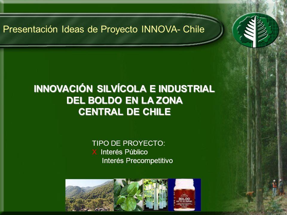 Presentación Ideas de Proyecto INNOVA- Chile INNOVACIÓN SILVÍCOLA E INDUSTRIAL DEL BOLDO EN LA ZONA CENTRAL DE CHILE TIPO DE PROYECTO: X Interés Públi