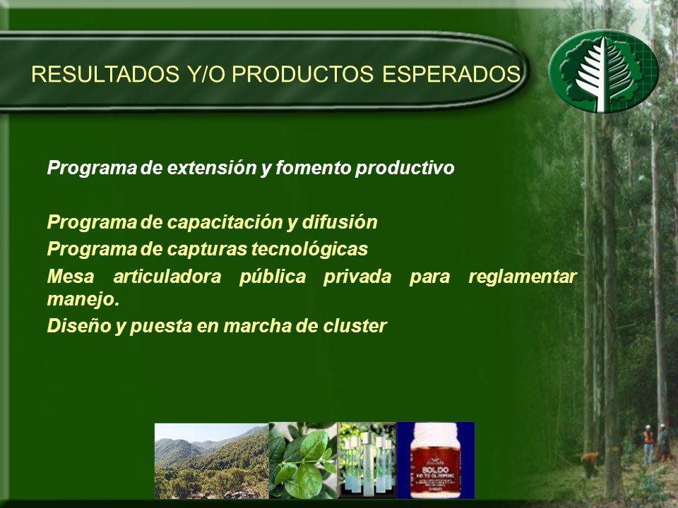 RESULTADOS Y/O PRODUCTOS ESPERADOS Programa de extensión y fomento productivo Programa de capacitación y difusión Programa de capturas tecnológicas Me