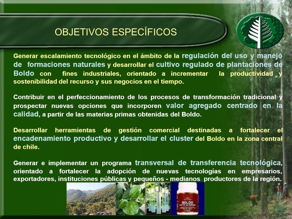 OBJETIVOS ESPECÍFICOS Generar escalamiento tecnológico en el ámbito de la regulación del uso y manejo de formaciones naturales y desarrollar el cultiv