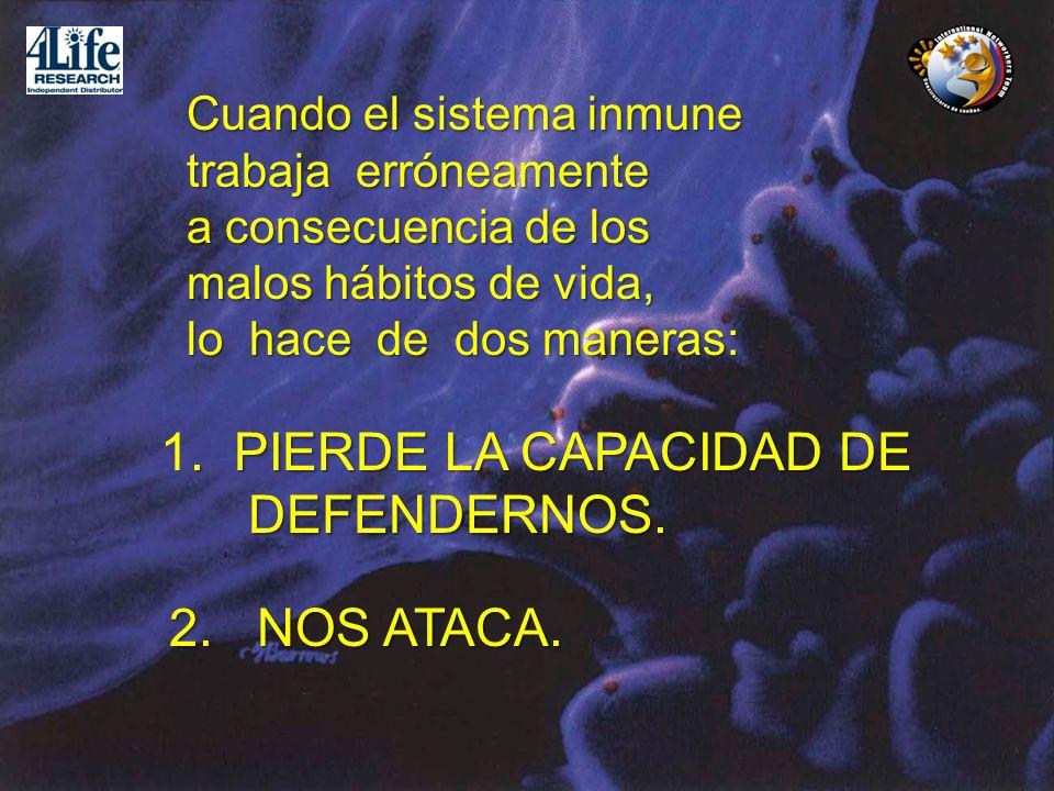 Cuando el sistema inmune trabaja erróneamente a consecuencia de los malos hábitos de vida, lo hace de dos maneras:. PIERDE LA CAPACIDAD DE 1. PIERDE L