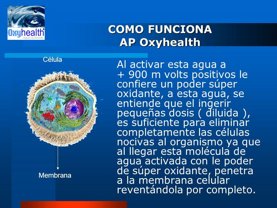 COMO FUNCIONA AP Oxyhealth Al activar esta agua a + 900 m volts positivos le confiere un poder súper oxidante, a esta agua, se entiende que el ingerir