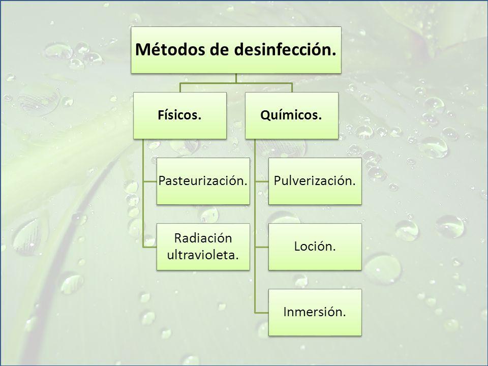 Métodos de desinfección. Físicos. Pasteurización. Radiación ultravioleta. Químicos. Pulverización. Loción. Inmersión.