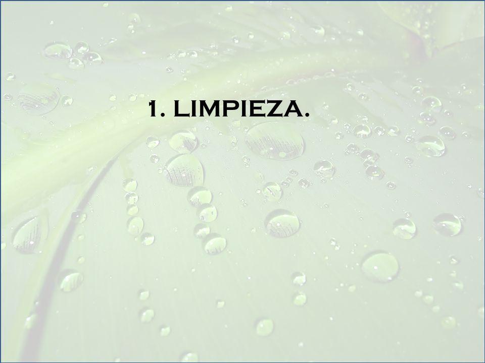 1. LIMPIEZA.