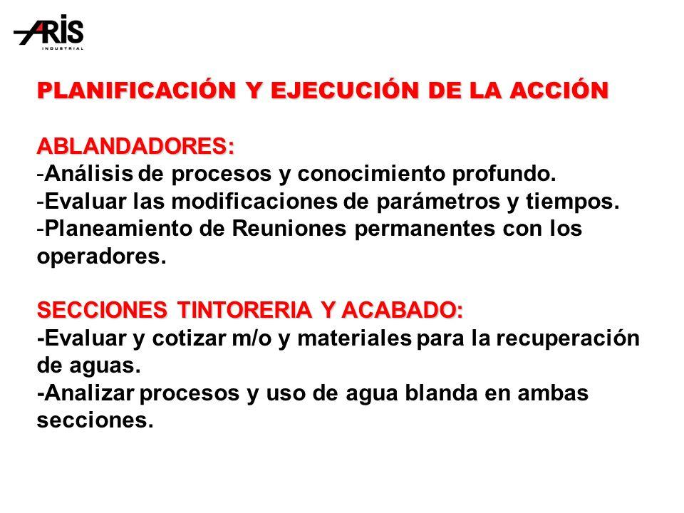 PLANIFICACIÓN Y EJECUCIÓN DE LA ACCIÓN ABLANDADORES: -Análisis de procesos y conocimiento profundo.