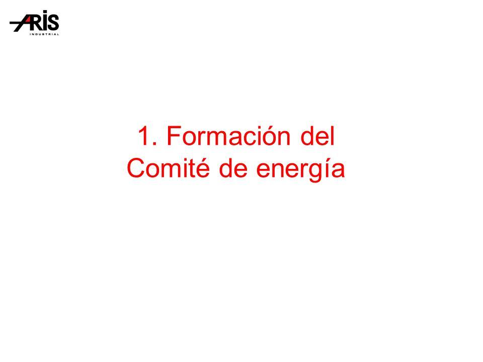 1. Formación del Comité de energía