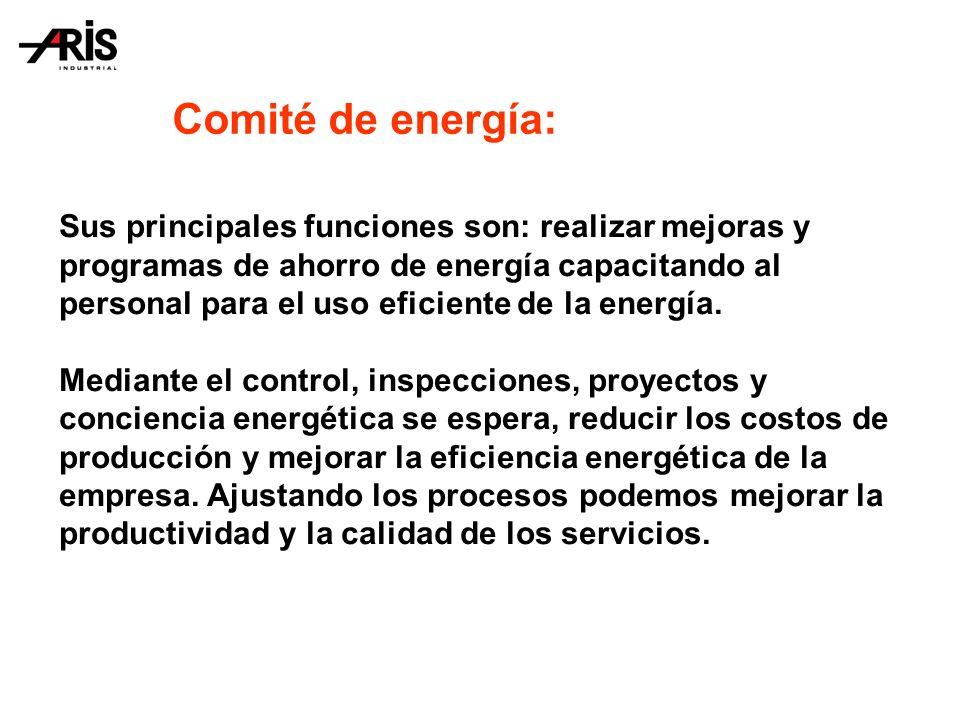 Administración del comité de energía: 1.El comité debería ser liderado por 1 coordinador.