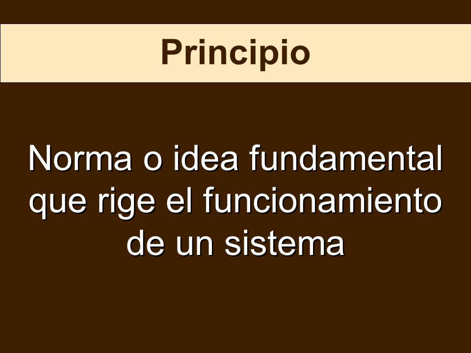 Principio Norma o idea fundamental que rige el funcionamiento de un sistema