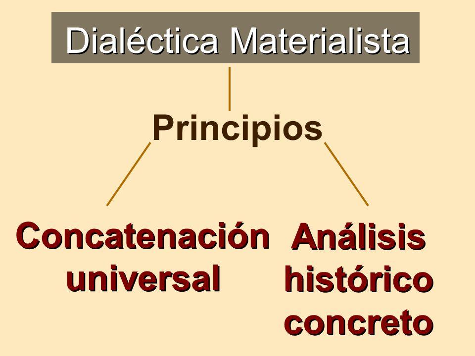 Concatenación universal Análisis histórico concreto Dialéctica Materialista Principios