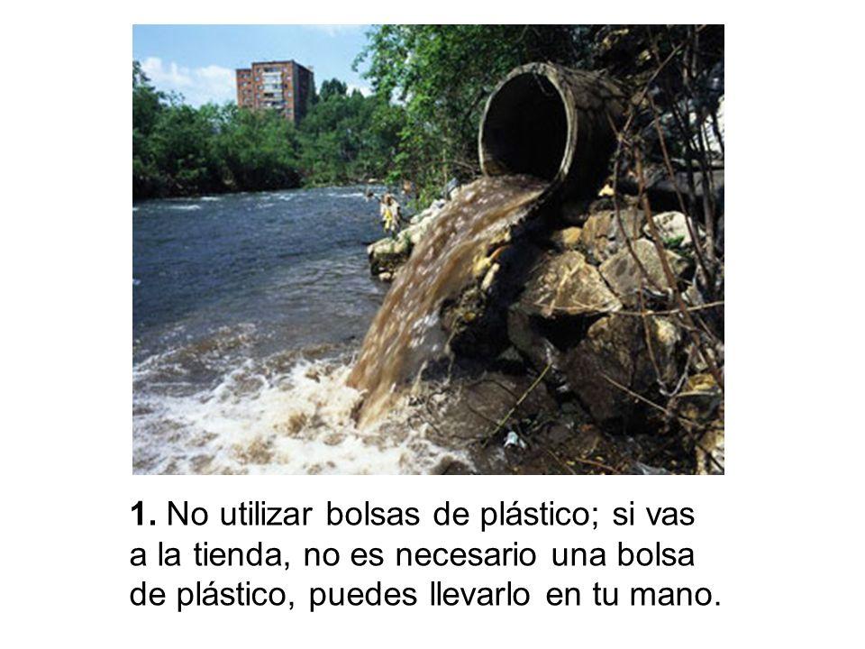 1. No utilizar bolsas de plástico; si vas a la tienda, no es necesario una bolsa de plástico, puedes llevarlo en tu mano.
