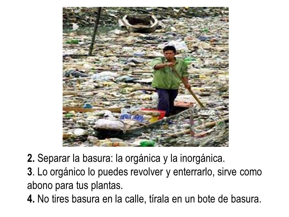2. Separar la basura: la orgánica y la inorgánica. 3. Lo orgánico lo puedes revolver y enterrarlo, sirve como abono para tus plantas. 4. No tires basu