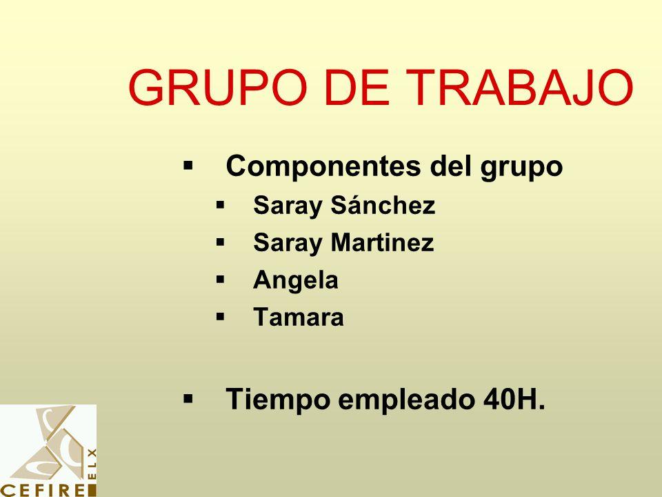 GRUPO DE TRABAJO Componentes del grupo Saray Sánchez Saray Martinez Angela Tamara Tiempo empleado 40H.