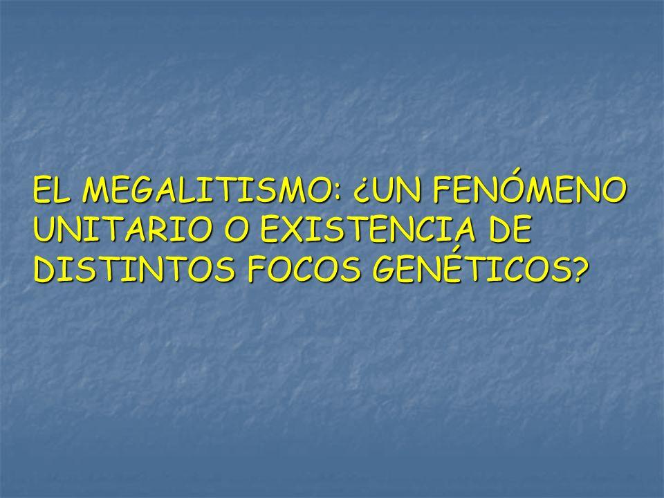EL MEGALITISMO: ¿UN FENÓMENO UNITARIO O EXISTENCIA DE DISTINTOS FOCOS GENÉTICOS?