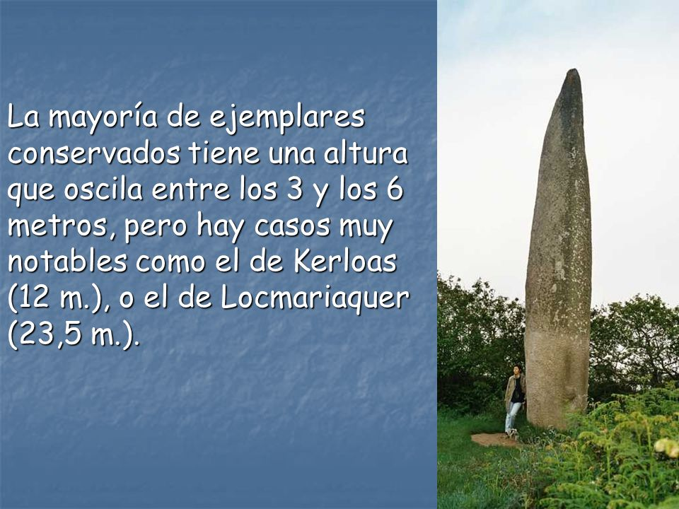 La mayoría de ejemplares conservados tiene una altura que oscila entre los 3 y los 6 metros, pero hay casos muy notables como el de Kerloas (12 m.), o