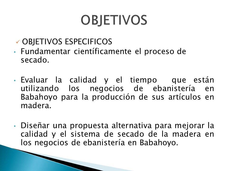 OBJETIVOS ESPECIFICOS Fundamentar científicamente el proceso de secado.