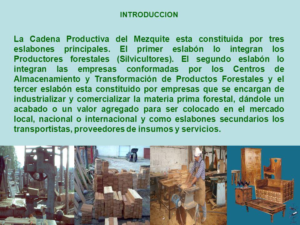 La Cadena Productiva del Mezquite esta constituida por tres eslabones principales. El primer eslabón lo integran los Productores forestales (Silvicult