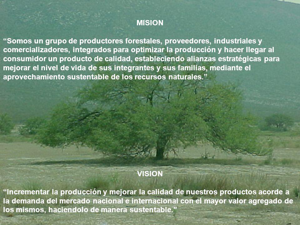 MISION Somos un grupo de productores forestales, proveedores, industriales y comercializadores, integrados para optimizar la producción y hacer llegar