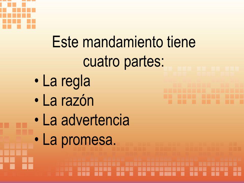 Este mandamiento tiene cuatro partes: La regla La razón La advertencia La promesa.