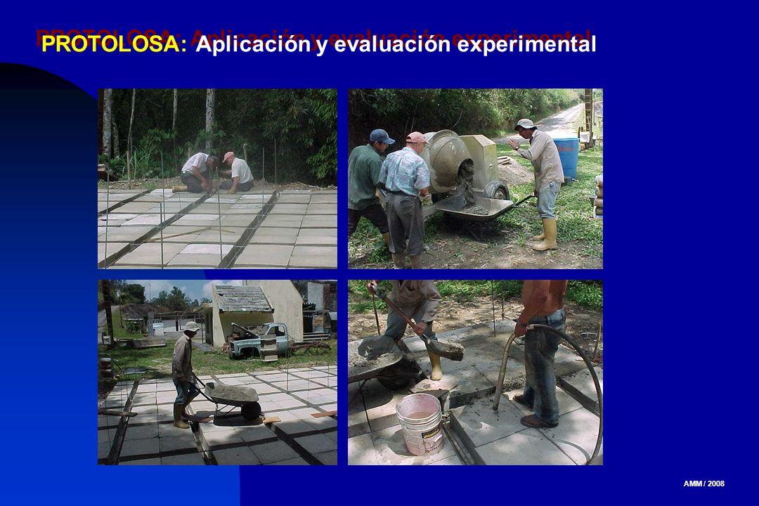 AMM / 2008 PROTOLOSA: Aplicación y evaluación experimental