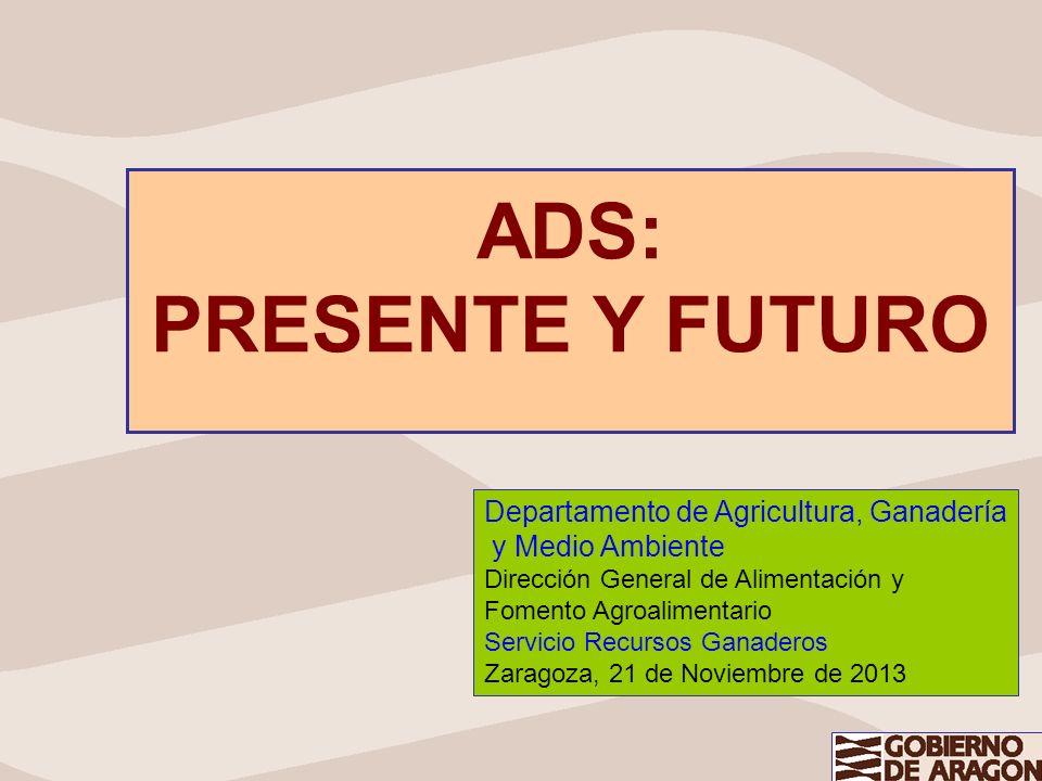 ADS: PRESENTE Y FUTURO Departamento de Agricultura, Ganadería y Medio Ambiente Dirección General de Alimentación y Fomento Agroalimentario Servicio Re