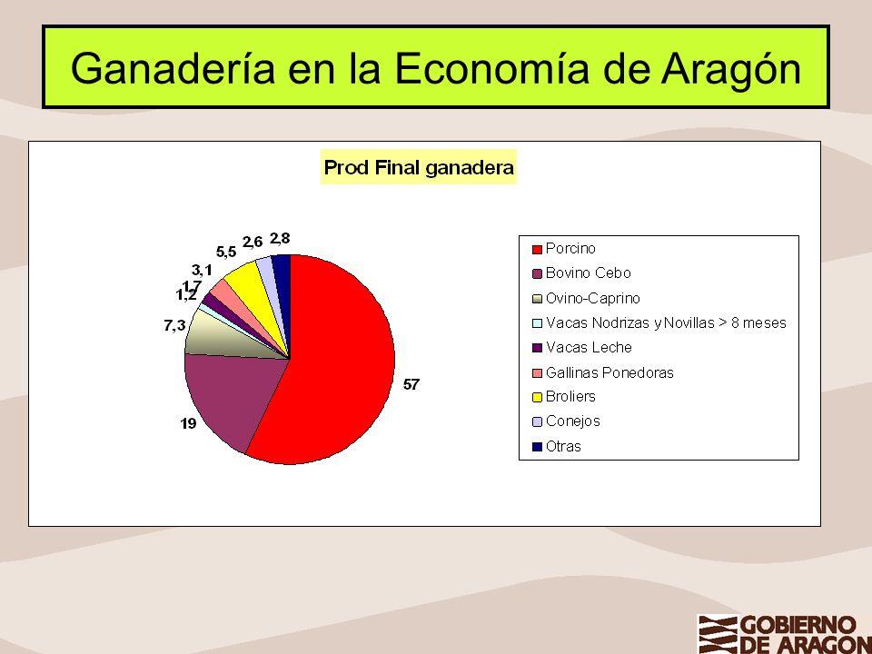 Ganadería en la Economía de Aragón