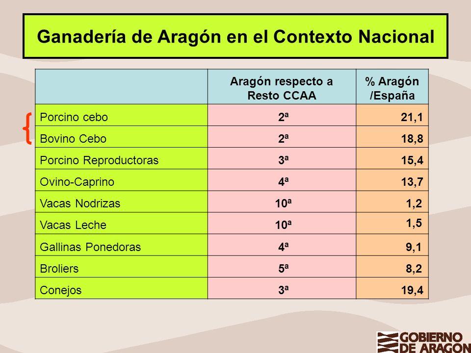 Ganadería de Aragón en el Contexto Nacional Aragón respecto a Resto CCAA % Aragón /España Porcino cebo 2ª 21,1 Bovino Cebo 2ª 18,8 Porcino Reproductor