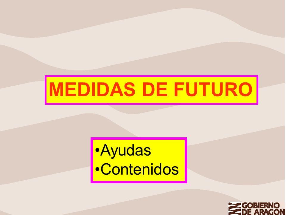MEDIDAS DE FUTURO Ayudas Contenidos