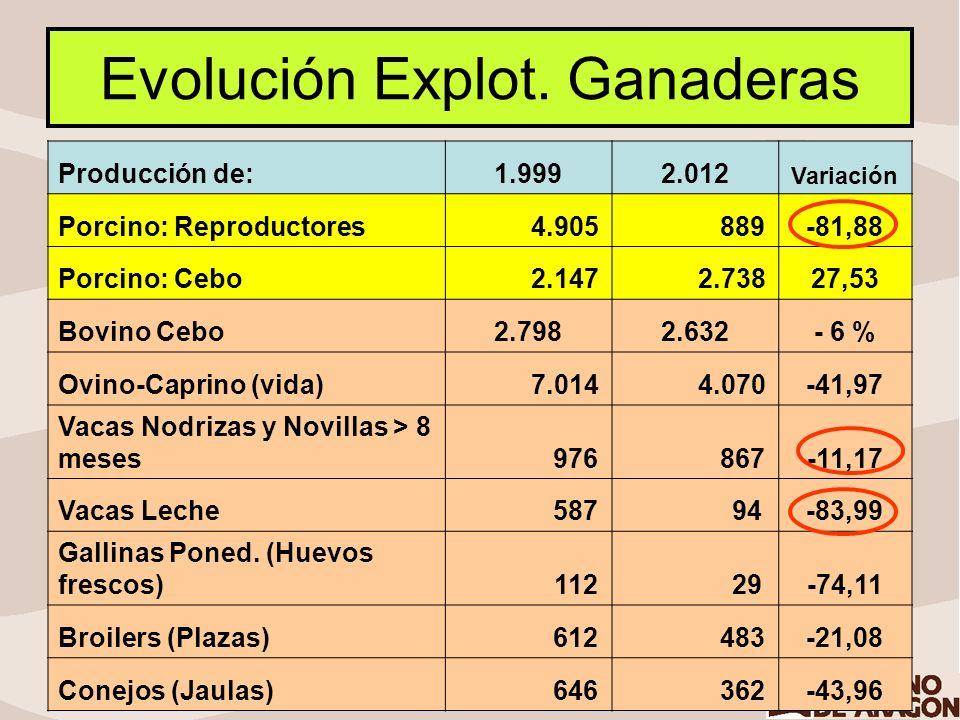 Evolución Censos Ganaderos Producción de:1.9992.012 Variación Porcino: Reproductores 294.947 482.283+ 63,5 % Porcino: Cebo 2.603.421 4.790.929+ 84,1% Bovino Cebo220.203181.560- 18% Ovino-Caprino (vida) 2.387.798 1.703.077- 28 % Vacas Nodrizas y Novillas > 8 meses 39.396 45.297+ 15 % Vacas Leche 14.420 16.032+ 12 % Gallinas Ponedoras (Huevos frescos) () 2.035.721 4.130.000+ 203 % Broilers (Plazas) 15.673.032 11.527.423- 26 % Conejos (Jaulas) 162.576 178.201+ 11%