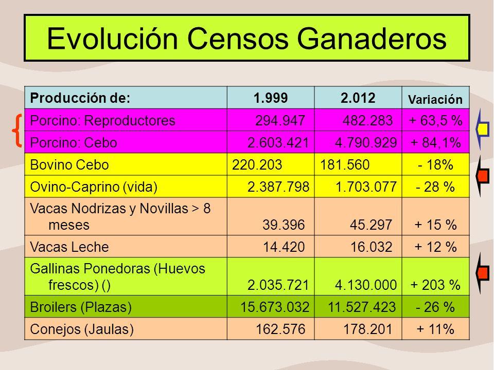 Evolución Censos Ganaderos Producción de:1.9992.012 Variación Porcino: Reproductores 294.947 482.283+ 63,5 % Porcino: Cebo 2.603.421 4.790.929+ 84,1%